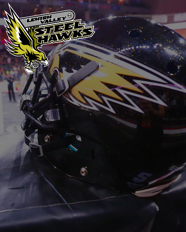 Steelhawks_800x643.png